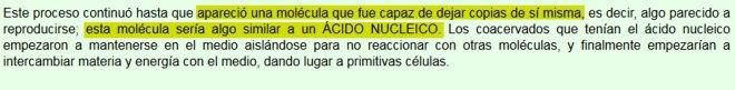 ácido-nucleico.jpg