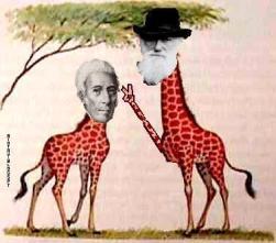 lamarck-vs-darwin-2-biotay.jpg