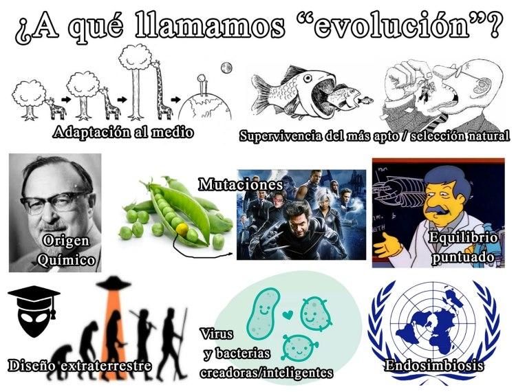 evolución-cartel